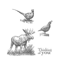 Walk In The Wild Clear Stamp Set