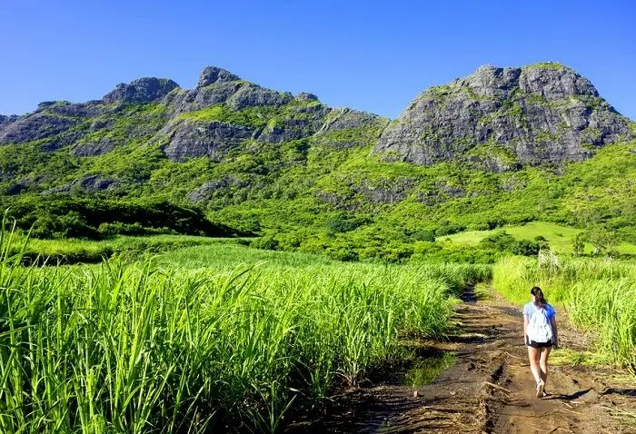 A view of mountain in Mauritius