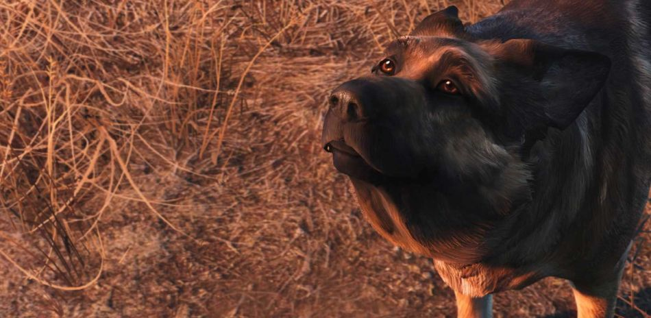 Fallout 4s Latest Update Containing Support For Nuka