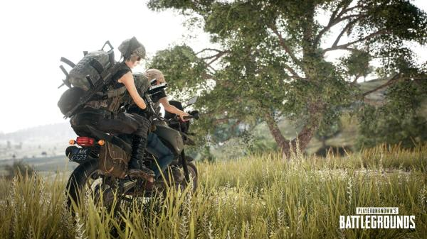 PUBG has lost half of its player base on Steam since ...