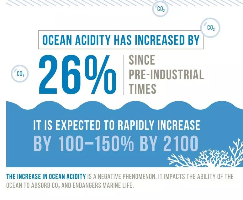 Se espera que la acidez de los océanos aumente en los próximos cien años.