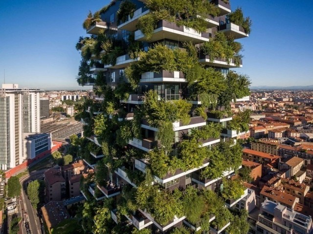 Trees cities green economy