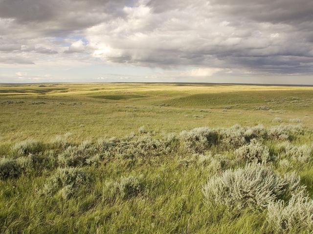 The Great Plains | Places | WWF