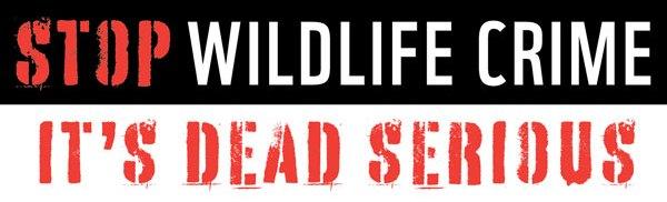 Stop Wildlife Crime: It's Dead Serious