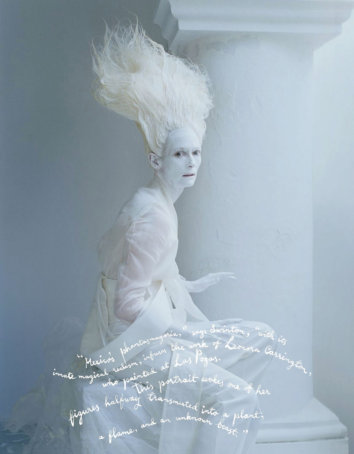 tim walker amp tilda swinton for w magazine yellowtrace