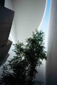 Love House by Takeshi Hosaka | Yellowtrace
