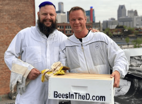 """""""They Just Appeared One Day"""": Detroit Is Importing Millions Of Honey Bees"""