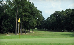 $99 for Foursome of Golf with Cart Rental at The Village Golf Club in Conroe
