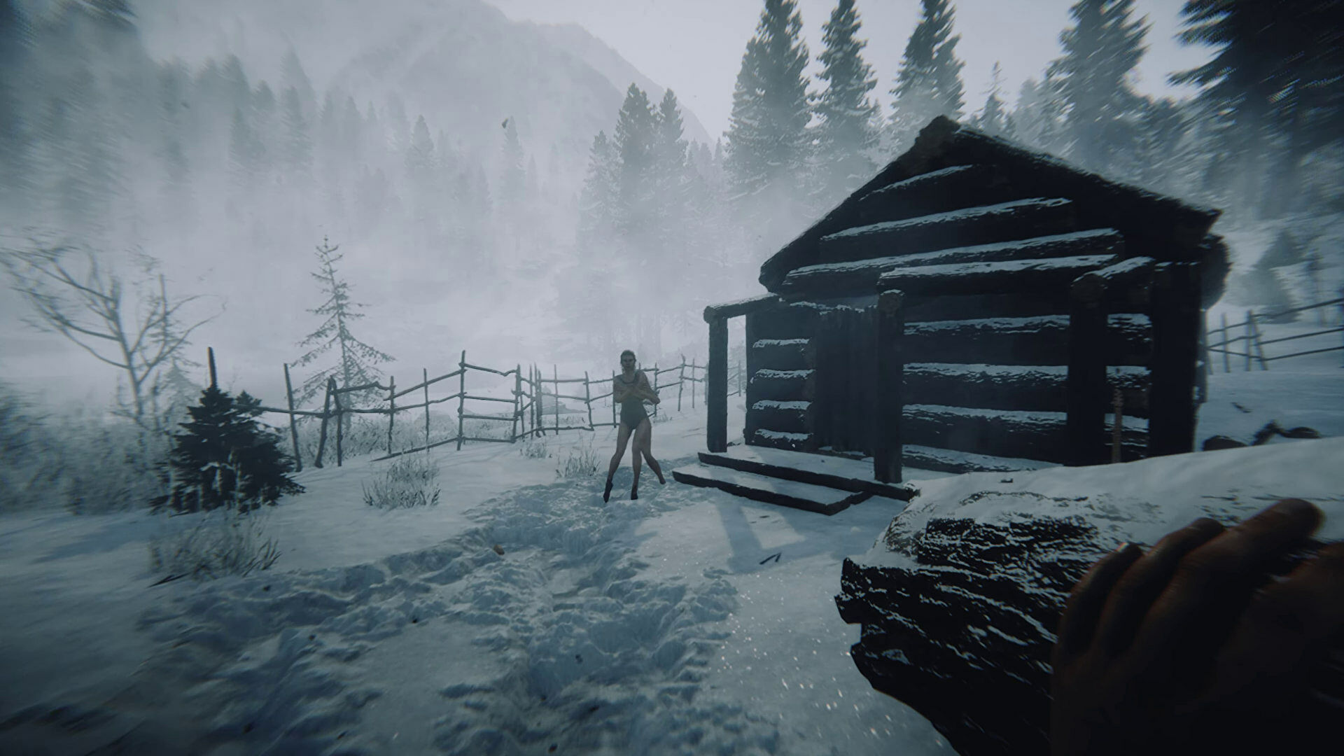 With 11 ski resorts, eight wilderness areas, 10 mountain peaks over 14,000 feet and 2,500 miles of trails, this forest is a place where you can press play on adventure and inspiration! The Forest Sequel Coming In 2021 Rock Paper Shotgun