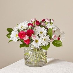 Order online or call us today. Same Day Flower Delivery In Norfolk Va 1st In Flowers