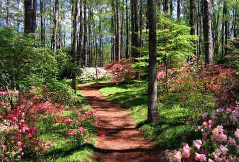 Most Beautiful Places to Visit in Georgia   Thrillist callaway gardens