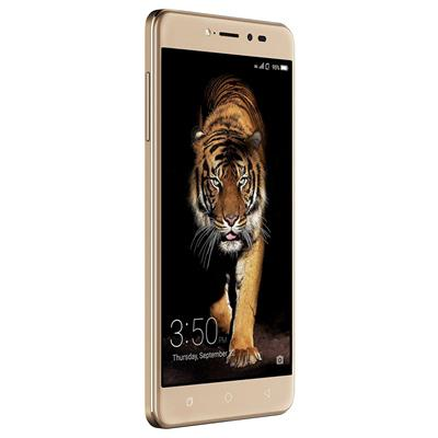 Coolpad Note 5 Royal Gold 32GB (Gold)