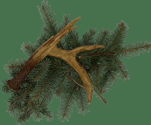 antler and garland