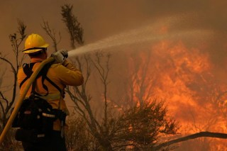 Government provides firefighters to help control damaging wildfires.