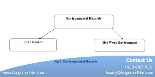 Environmental Sustainability Assignment
