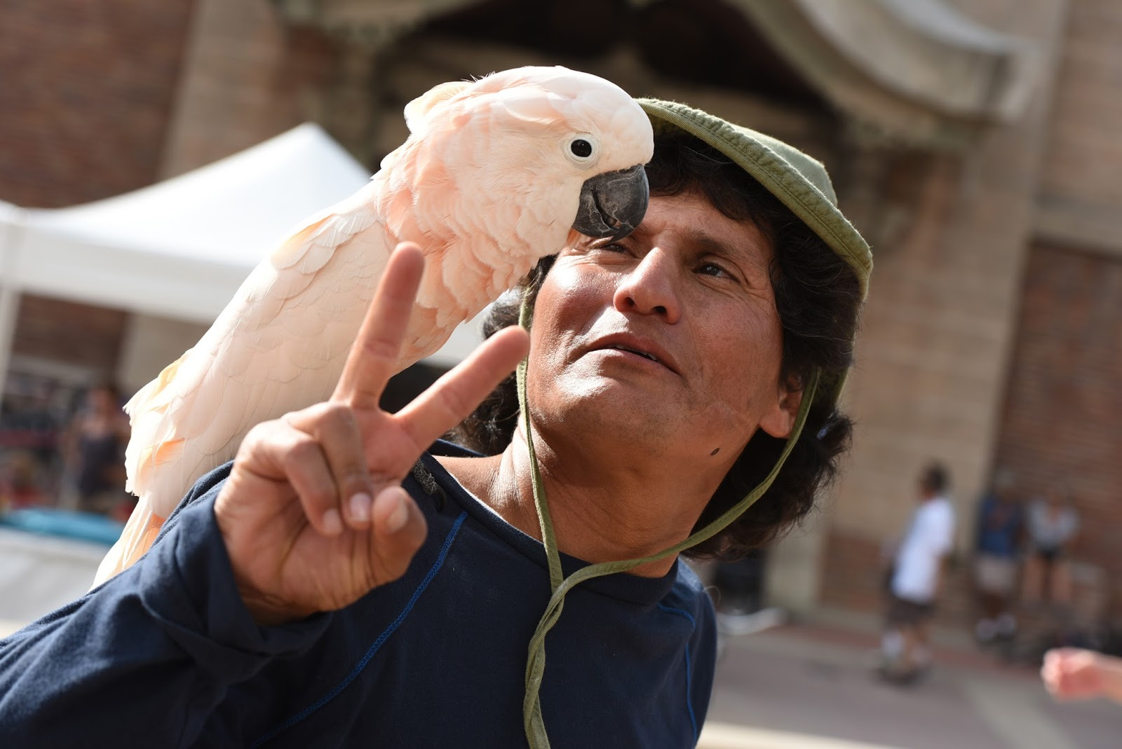 man-parrot-15-HR