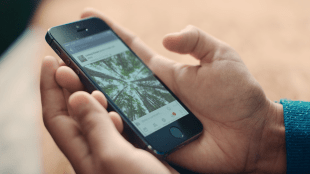 a person holding an iPhone with the Facebook app open. There is an image of trees displayed on the app.
