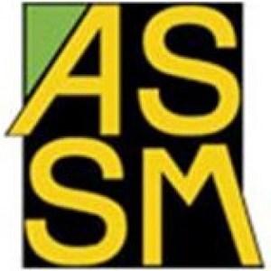 cropped-VRAI-LOGO-ASSM.jpg