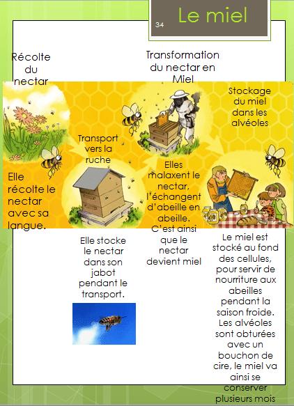 le vrai miel