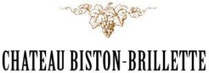 Biston Brillette