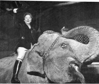 """When """"Lunch Box"""" was relayed as an outside broadcast from the circus Noele was aloft - on the elephant - and it was Western style when the show went to Leicester."""