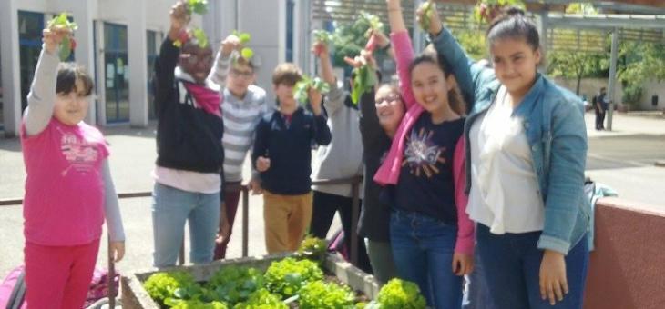 Un stage nature pour les 8/12 ans autour de la permaculture