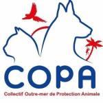 Grande pétition pour les animaux d'outre mer