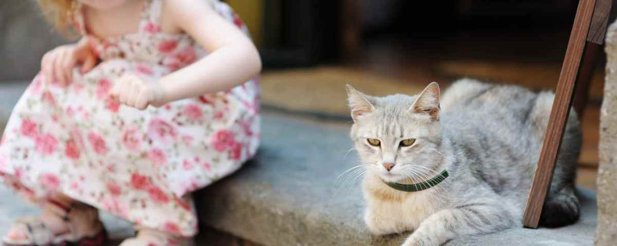 Souffrir d'eczéma et avoir un animal de compagnie