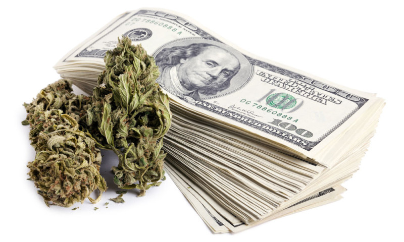 Image result for Cannabis Cash