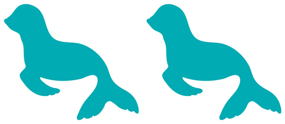 Seal Sealion Sticker Decal