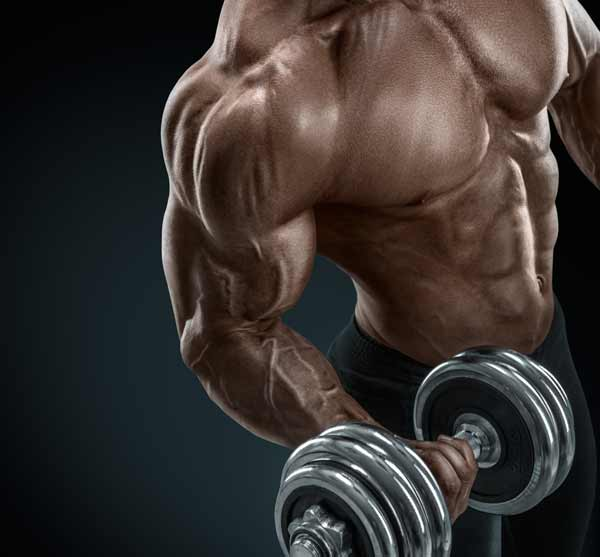 Barbell Curls Vs. Dumbbell Curls. Which Is More Effective