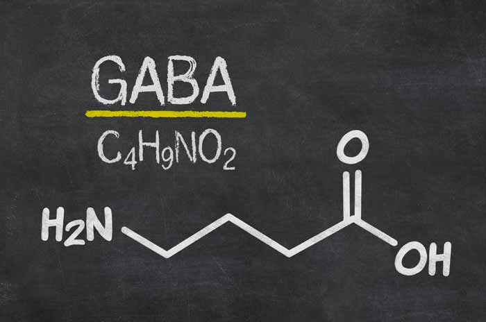 The Latest Research on GABA: The Growth Hormone Booster.