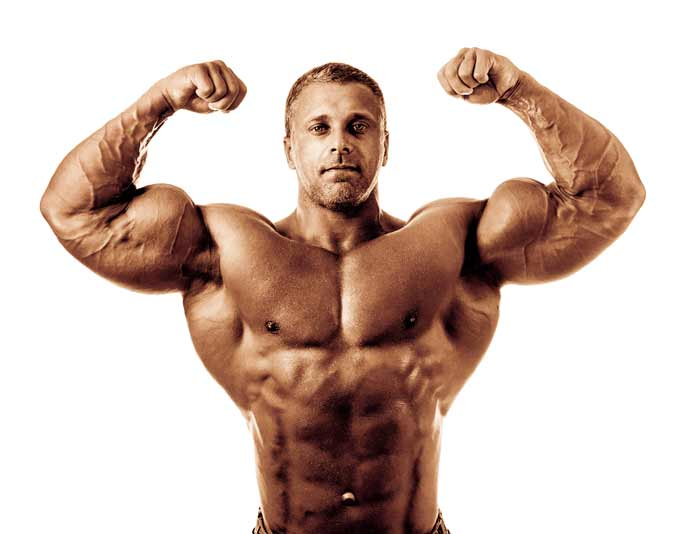 Muscle Cell Volume: The Forgotten Anabolic, Muscle-Building Stimulus
