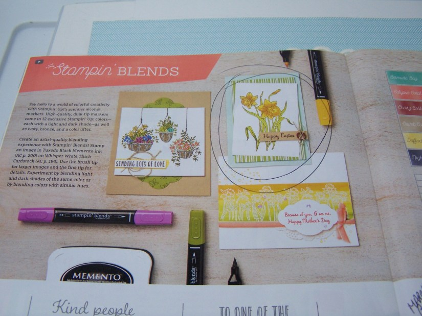 Page 30 in Occassions Catalog intro to Stampin' Blends