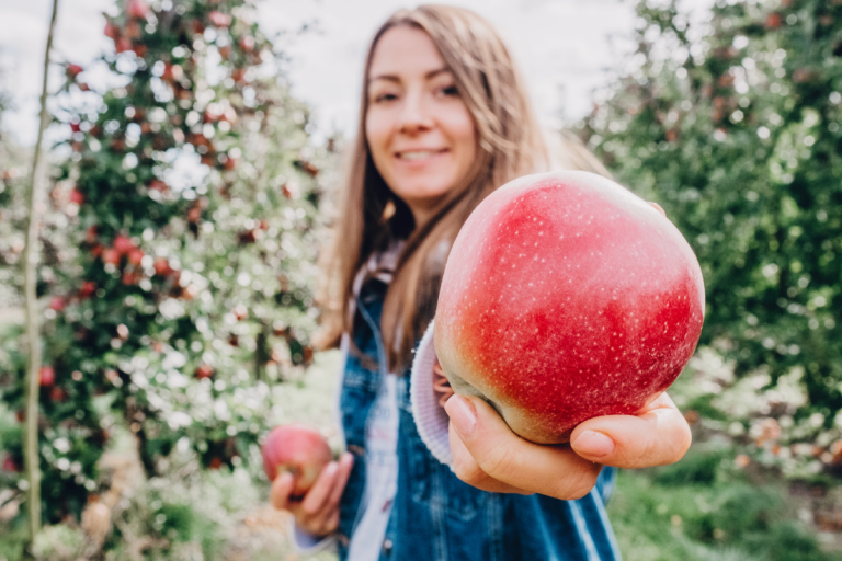 Why you need to go apple picking this fall - by A Stellar You Montreal Blog