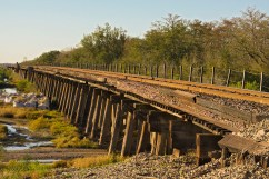 Riding the American Rails by Madhu Kaza