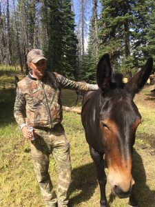 Early fall elk hunting trip