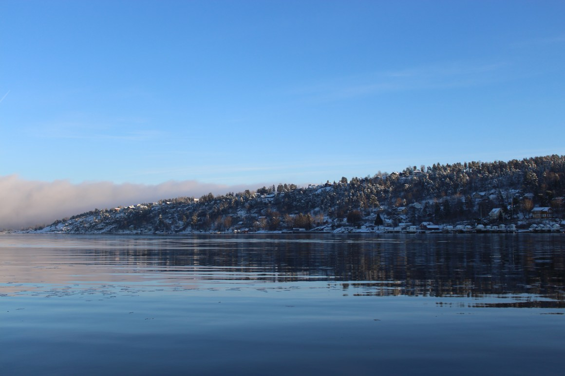 Oslo Fjord Sightseeing - cottages on the banks of the Oslo fjords