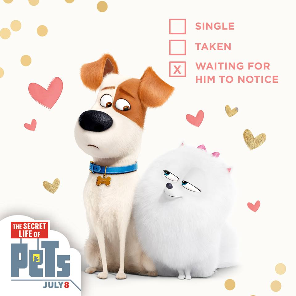 The Secret Life Of Pets Valentines Day Cards As They