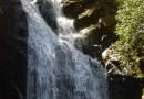 Field Trip Friday: High Shoals Falls Hike