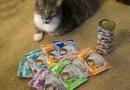 Weruva Wants to Know How Much Your Feline Friend Loves Gravy
