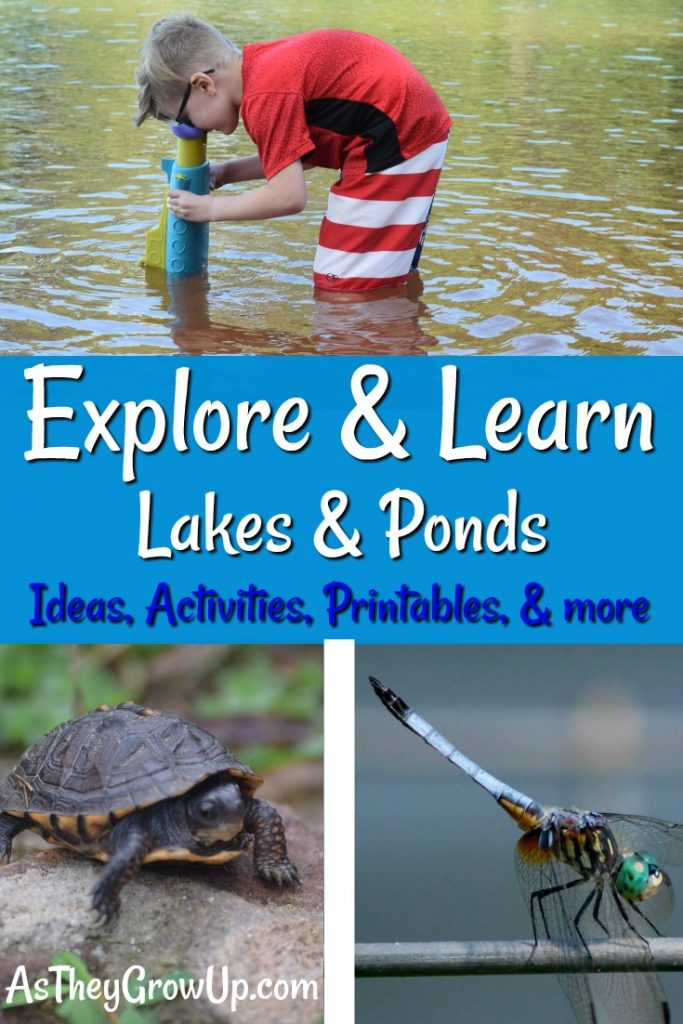 Explore and Learn Lakes and Ponds