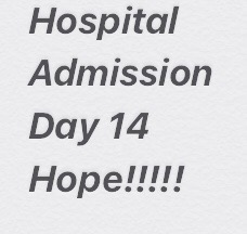 Hospital Admission – Day 14 and Hope