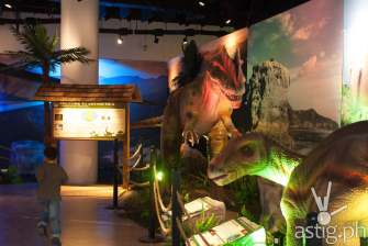 Iguanodon and Neovenator - Dinosaurs Around The World exhibit - Mind Museum BGC