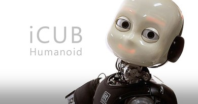 The iCub Humanoid Robot Project