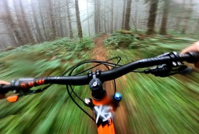 Riding Through The Foggy Forest