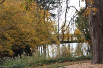 One of the ponds at Ercildoune