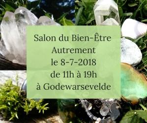 Salon de Godewarsevelde Astre et Mineral Lille