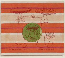 A. Vander Kooij, Poisonous Mushroom, (embroidery on dish towel, 2006)