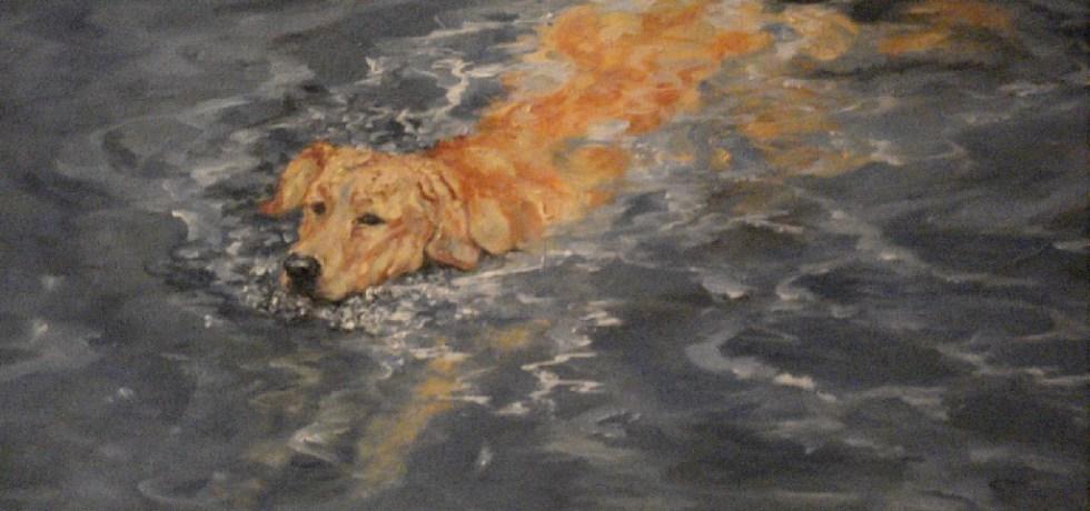 Waterlander, olieverf op canvas, 30 x 40 cm, 2009